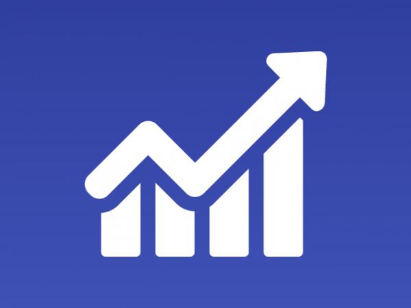 Bilanci - Investigazioni aziendali e servizi informativi