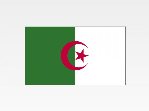 Algeria - Investigazioni aziendali e servizi informativi