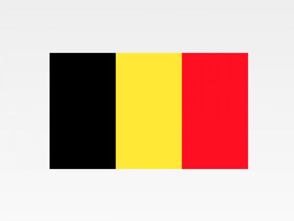 Belgio - Investigazioni aziendali e servizi informativi