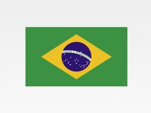 Informazioni Finanziarie Internazionali – Brasile