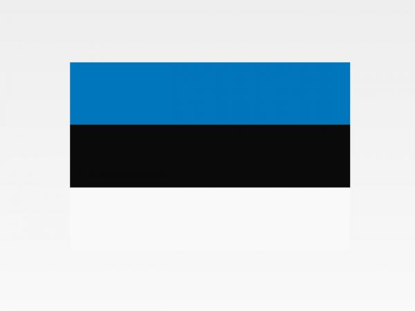 Estonia - Investigazioni aziendali e servizi informativi