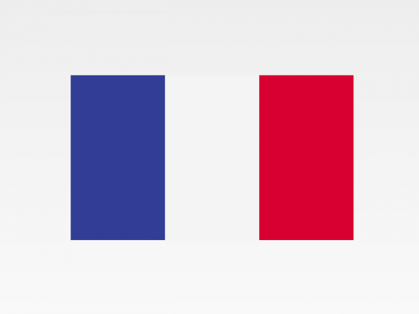 Francia - Investigazioni aziendali e servizi informativi