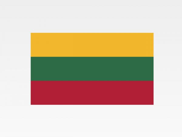 Lituania - Investigazioni aziendali e servizi informativi