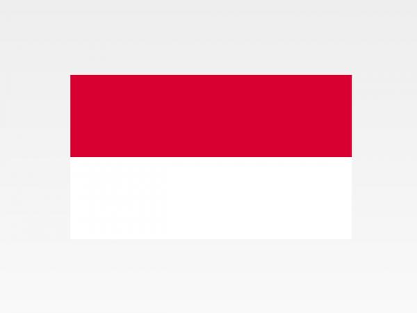 Monaco - Investigazioni aziendali e servizi informativi