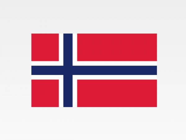 Norvegia - Investigazioni aziendali e servizi informativi