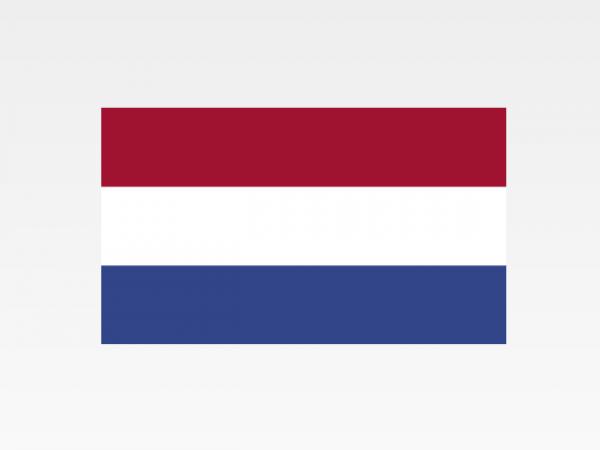Paesi Bassi - Investigazioni aziendali e servizi informativi