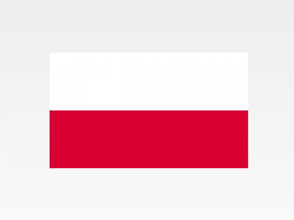 Polonia - Investigazioni aziendali e servizi informativi