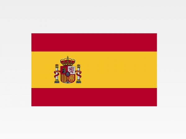 Spagna - Investigazioni aziendali e servizi informativi