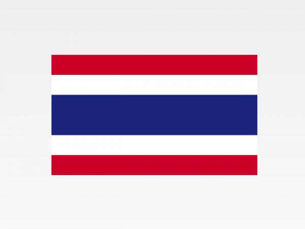 Thailandia - Investigazioni aziendali e servizi informativi