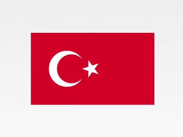 Turchia - Investigazioni aziendali e servizi informativi