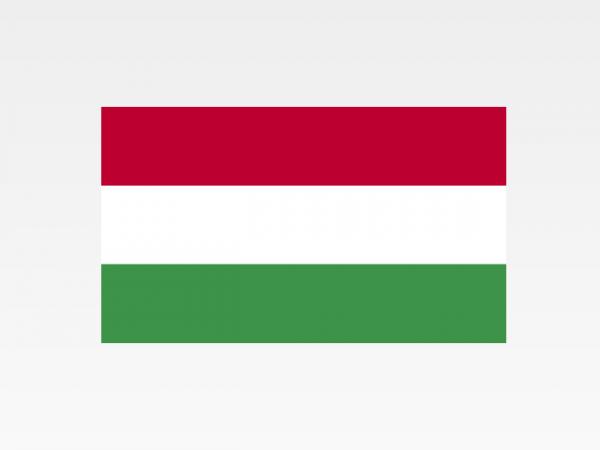 Ungheria - Investigazioni aziendali e servizi informativi