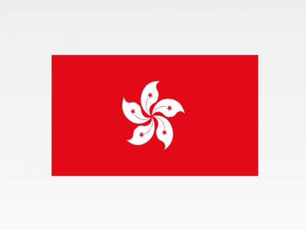 Hong Kong - Investigazioni aziendali e servizi informativi