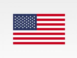 Report Aziende Estero Online – USA