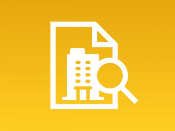 Dossier company basic - Investigazioni aziendali e servizi informativi