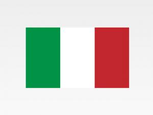 Report Aziende Estero Online – Italia