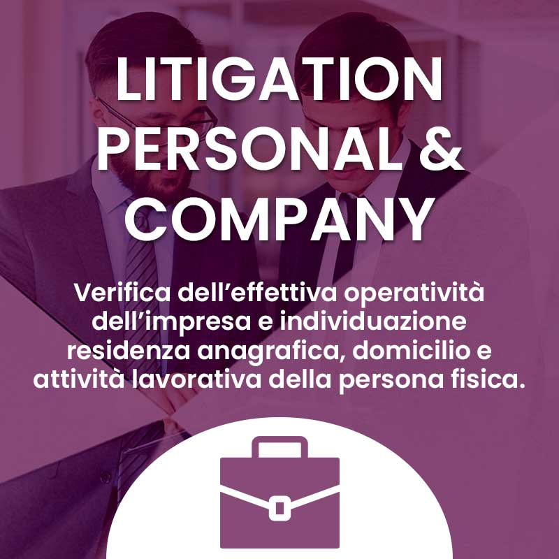 Servizi Litigation Report